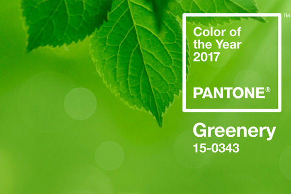 color of the year 2017 pantone